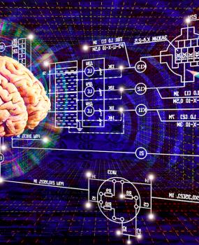 Maximize Your Brain Power with  Brain Based Ergonomics