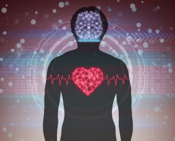 3 Reasons You Love Your Cerebellum